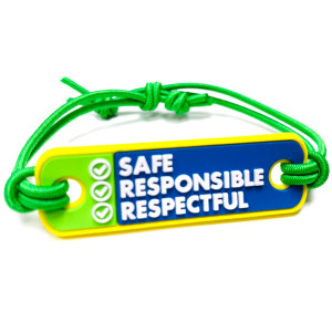 3D Bands - Safe Responsible Respectful